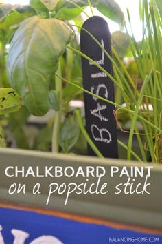 Chalkboard paint on popsicle stick for plant markers