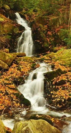 Mouse Creek Falls -The 4-mile roundtrip hike to the waterfall is considered moderate in difficulty. It takes about 2-3 hours to hike to the waterfall and back.