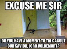 Hahahahaha died!
