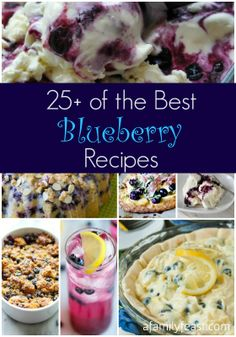 25-Plus Best Blueberry Recipes! A great collection of savory and sweet recipes plus beverages, all using blueberries as the star ingredient!
