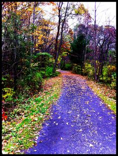 on the recreation trail in Ithaca