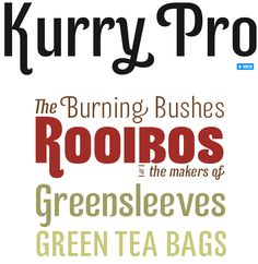 My Fonts | Kurry ( I like what Roobois is in)