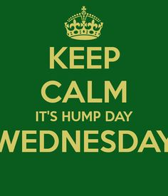 Keep Calm, it's Hump Day WEDNESDAY