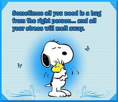 Snoopy / Charlie Brown 12fca24c9f57cfd977af42d53a707dcf
