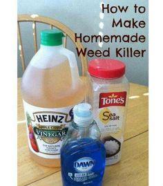 idea, dawn dish soap, spray, weedkiller, weed killers, apple cider vinegar, weeds, homemad weed, garden