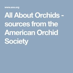 All About Orchids -