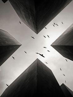 photographi inspir, art, buildings, amaz photographi, beauti, perspective, birds, photography, egon kronschnab