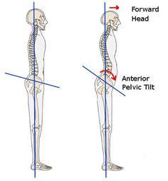 myofascial release hip flexors ball