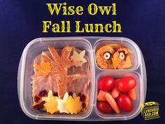 Wise Owl Fall Lunch