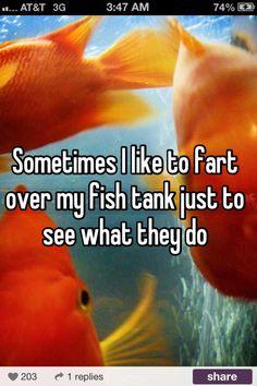 Whisper LOL. I love that app!!