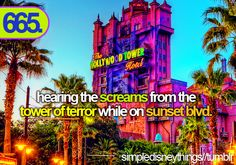 hearing the screams from tower of terror on sunset blvd