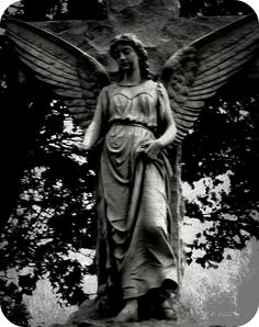 Angel+Statue+modified+round+corners.png (1264×1600)