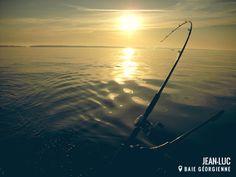 Internet les magasins pour la pêche linférieur