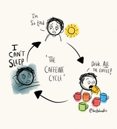 The caffeine cycle.