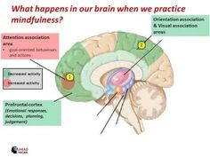 What happens in our brain when we practice mindfulness?  #Mindfulness #Meditation #Neuroscience #Spirituality