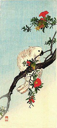 """伊藤総山 Sozan Ito """"Parrot on Pomegranate""""(1925)"""