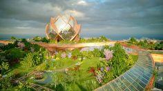 Lotus City 8