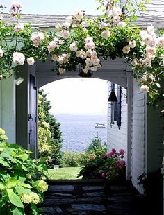 romantic garden view with rose arch