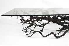 Tree coffe table / SEBASTIAN ERRAZURIZ