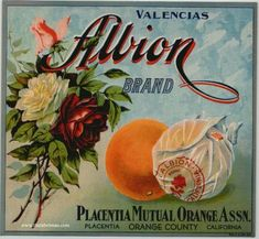 Vintage Fruit Crate Label 19 by chicks57, via Flickr