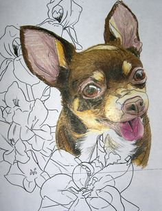 Google Image Result for http://www.deviantart.com/download/133902621/Chihuahua_tattoo_study_by_BarbedDragon.jpg