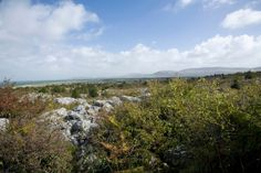 The Burren in #Ireland with VBT.