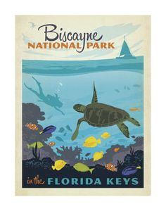 Biscayne National Park In The Florida Keys