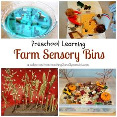 A collection of sensory bins for the farm theme - also includes picture books, songs, activities, and free printables! From Teaching 2 and 3 Year Olds