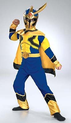 Power Rangers Blue Special Ranger Costume