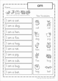 Sight Words - Phrases for Homework (Primer Words). A great way to build confidence and fluency in beginning readers!