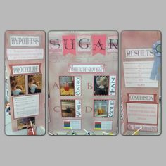 Science Fair, sugar crystals