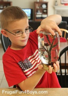 """Fall Tree """"Snow Globes"""" Craft for Kids from Frugal Fun For Boys"""
