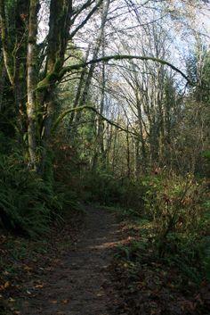Best hikes in Washington