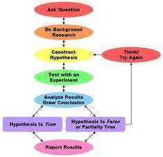 classroom idea, charts, school, scientif method, scienc fair, educ, teacher, science fair, scientific method