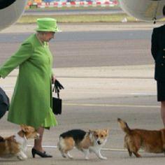 queen elizabeth + Dogs