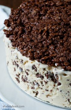 Nutella Crunch Ice Cream Cake recipe - 3 ingredients. Super easy and amazingly delicious! Great for a crowd! (sub coconut milk ice cream and gluten free cereal)