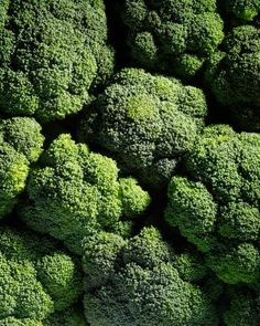 Cancer hates broccoli--Raw broccoli and cancer prevention
