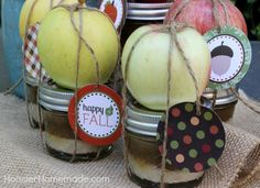 The very best thing about apple season is enjoying them with caramel. In my opinion, it's one of the best flavor combinations ever, whether you add them to cookies or enjoy dipping them. Caramel Ap...