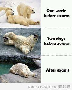Exams. True life.