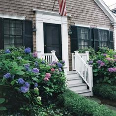 5 Tips for Growing Gorgeous Hydrangeas garden-greats