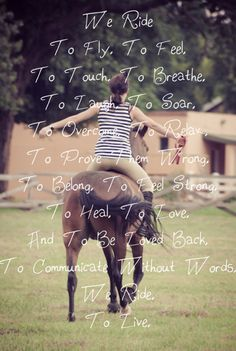 equestrian quotes | ... & Neighs | Tags: equestrian quotes , horse quotes | No Comments..So Sydney!!!