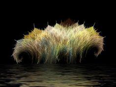 Los creativos fractales de Roger Johnston
