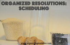 organis, organ resolut, life balanc, clean, schedul organ, resolutions, how to make a schedule, blog, organ schedul