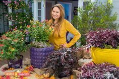"""SET YOUR RECORDERS! Friday, Oct. 3 for """"Home & Family"""" show on Hallmark @10AM PST. Shirley Bovshow presents some of her favorite plants for simple, easy to maintain fall containers! Thank you to Bailey Nurseries for plants from the First Editions® Collection and Green Thumb Nurseries for the colorful containers!"""