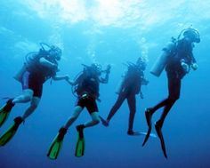 We tell you how you can go scuba diving in #Miami South Beach! Click to read more!