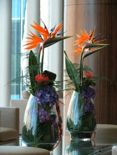 #Strelitzia #flower