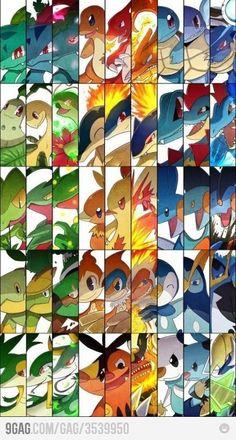 Pokemon fan...