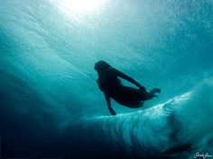 "Sarah Lee - ""Underwater Photography"""