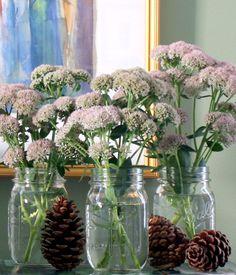 Fall Arrangement with Seedum Pinecones and Mason Jars