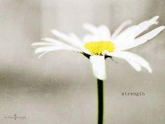 'give me strength' by Kim Klassen, via Flickr